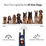 DOG CARE Dog Training Collar - Dog Shock Collar w/3 Training Modes, Beep, Vibration and Shock, IP65 Waterproof Training Collar, Up to 1000Ft Remote Range, 0-99 Shock Levels Dog Training Set