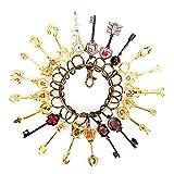 Fairy Tail Keys Chain,Cosplay Fairy Tail Lucy Heart Key Chain Celestial Spirit Gate Pendant Set of 21 Golden Zodiac Keys and Keyring for Children Kids Gifts