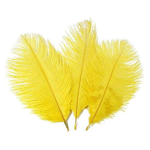 [Ostrich feathers,Hgshow 20pcs Natural 10-12 inch(25-30cm) Plume for Wedding Centerpieces Home] (27 Dresses Costumes)