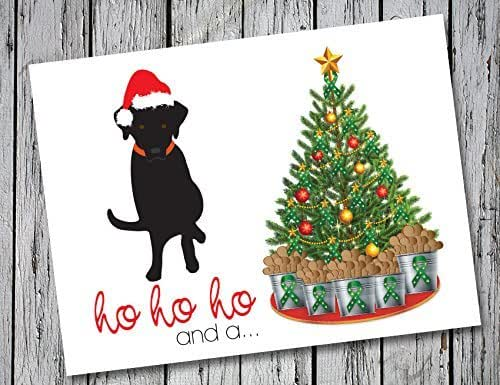 Amazon.com: Labrador Retriever Christmas Cards Set of 20