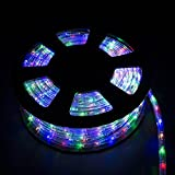 WALCUT USLI1002COLOR Flexible Crystal Clear PVC Tubing LED Rope Light Indoor/Outdoor Boat Decorative Party Christmas Holiday Business Restaurant Light Kit 110V, Multi-Color by WALCUT