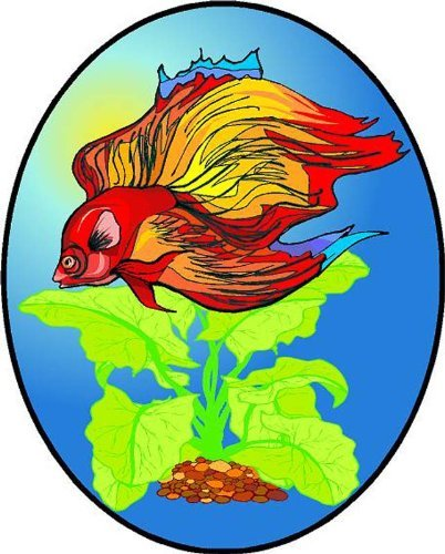 Red Siamese Fighting Betta Fish & Aquatic plants-vinyl Stained Glass Film , Static Cling Window Decal 08 in x 12 in B00BS1D5M0 08 in x 12 in08 in x 12 in