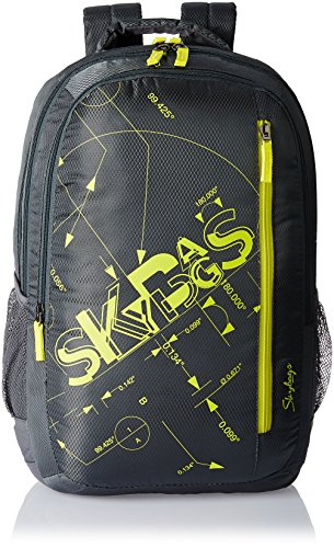 Skybags Pixel 30 Ltrs Grey Casual Backpack (PIXPLS03GRY)