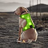 Bseen Comfort Control Dog Harness LED Pets Walking Accessory USB Rechargeable Soft Mesh Vest with Adjustable Belt Padded Lightweight Collar for Dogs Puppies (Small, Green)