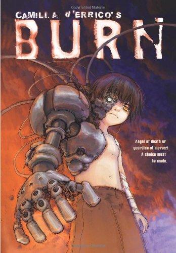 Camilla d'Errico's Burn ebook
