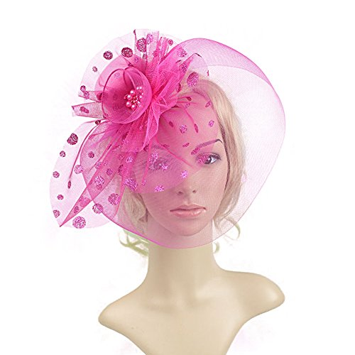 BAOBAO Women Fascinator Veil Flower Pearl Cocktail Tea Party Mini Top Hat Hair Clip (Top Hats Fancy Dress)