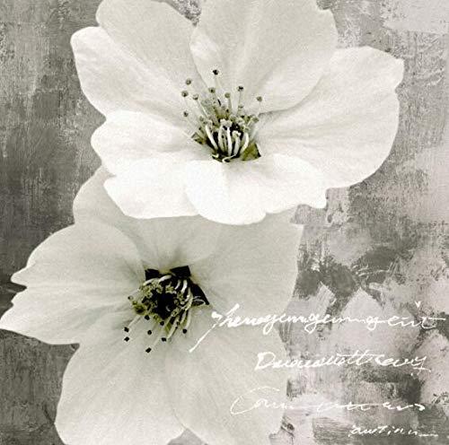 Rosa blanca pintura al oleo sobre lienzo abstracto flores modernas cuadros de la pared para la sala de estar imagen de arte decoracion 50 50 cm