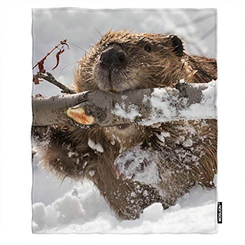 Beaver Fuzzy (Moslion Soft Cozy Throw Blanket Beaver Branch Gnawing Snow Fuzzy Warm Couch/Bed Blanket for Adult/Kids Polyester 30 X 40 Inches(Home/Travel/Camping Applicable))