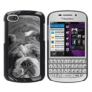 TopCaseStore / la caja del caucho duro de la cubierta de protección de la piel - English Bulldog Gray Black White Dog - BlackBerry Q10