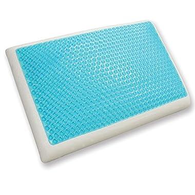 Classic Brands Reversible Cool Gel and Memory Foam Pillow, Standard