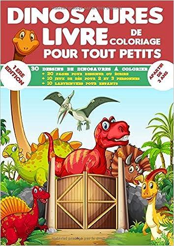 Amazon Fr Dinosaures Livre De Coloriage Pour Tout Petits Gros Livre De Coloriage Dinosaure Pour Les Enfants A Partir De 3 Ans Pour Les Tout Petits Coloriages Livres