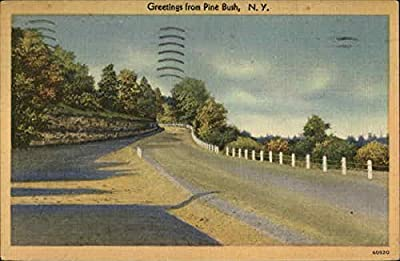 View of Country Lane Pine Bush, New York Original Vintage Postcard