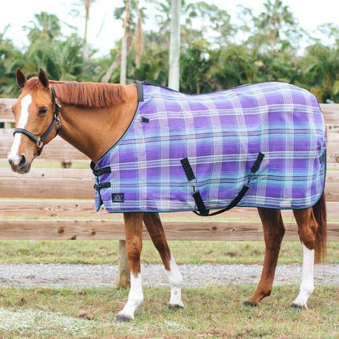 Kensington Platinum SureFit Protective Fly Sheet for Horses - SureFit Cut with Snap Front Chest Closure - Made of Grooming Mesh This Sheet Offers Maximum Protection Year Round - 81'' Lavender Mint