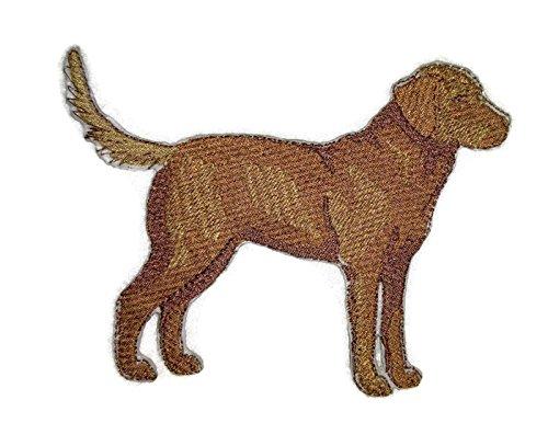 Amazing Custom Dog Portraits [Chesapeake Bay Retriever] Embroidery Iron On/Sew patch [5