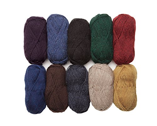 (Knit Picks Wool of The Andes Worsted Weight Yarn (10 Balls - Home)