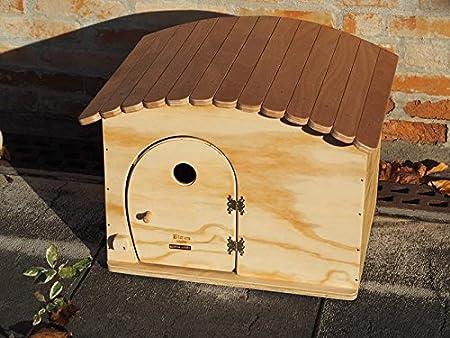 Novedad Blitzen, GinaBig Ouverture Wp, casita Caseta Outdoor para gatos de Grossa Talla y perros de talla pequeña, termoregolata.: Amazon.es: Jardín