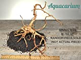 Spider Wood Natural Aquarium Spiderwood Driftwood by Aquacarium (Small - 8'' to 12'')