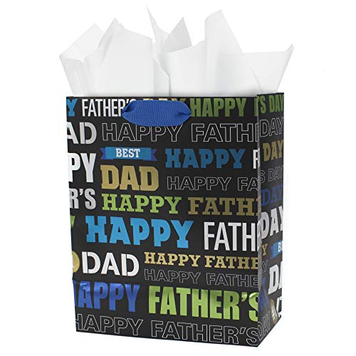 Hallmark Medium Father's Day Gift Bag with Tissue Paper (Dad Words) -