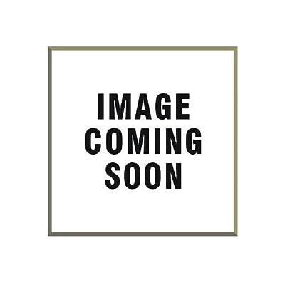 "Carrand (93080 10"" Soft Brush: Automotive"