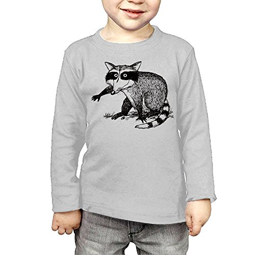 ZheuO Boys & Girls Infant Raccoon Soft 100% Cotton Tee Unisex Gray 5-6 Toddler