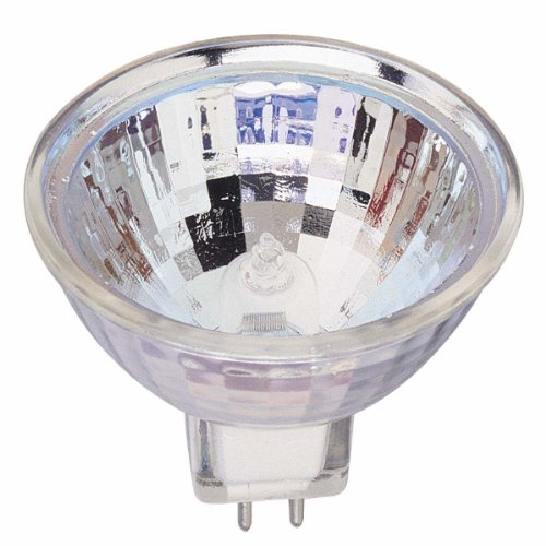 Flood Light Globe - 3
