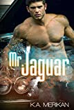 Free eBook - Mr  Jaguar