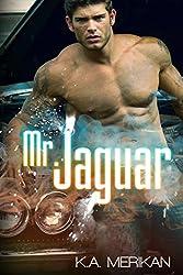 Mr. Jaguar (contemporary gay cinderfella erotic romance) (English Edition)