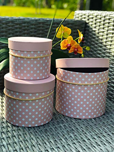 Small Pastel Flower Box - [USA-SALES] Premium Quality Round Flower Box, Gift Boxes for Luxury Flower and Gift Arrangements, Set of 3 pcs, with Lids, Size (S/M/L) (Pastel Pink White Dots)