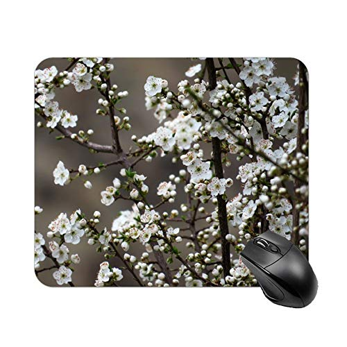 Yishour Mouse Pad Selective Focus Photography White Cherry Blossom Mousepad Non-Slip Rubber Gaming Mouse Pad Rectangle Mouse Pads for Computers Laptop]()