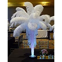 """Wedding Party Home Decor Decoration Ostrich Feathers Plumes ( 12""""-14"""") (50, White)"""
