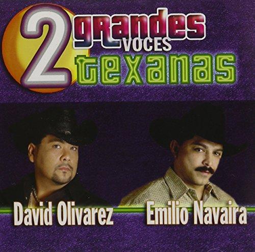 Dos Grandes Voces Texanas ()