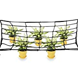 Elastic Trellis Netting for Grow Tents Fits 4x4 and More Size, Includes 4 Steel Hooks, 36 Growing Spaces