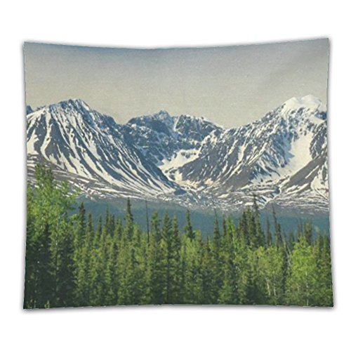 1929 Costume Jewelry (Beshowereb Fleece Throw Blanket Beshowereb Fleece Throw Blanket Beshowereb Fleece Throw Blanket Awesome Panoramic view of Yukon Mountains as Seen Cotton Linen)