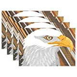 THENAHOME America Bald Eagle Placemats Heat Stain Resistant Anti-Skid Table Mats for Kitchen Dining Table (12''x 18'')