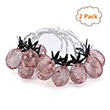 OHSEE 2Pack 5 FT 10 LED String Lights with Rose Gold Metal Pineapple Cage Battery Operated Fairy Lights Great for Home Patio Bedroom Room Garden Wedding Party Indoor Wall Decoration (Warm white)