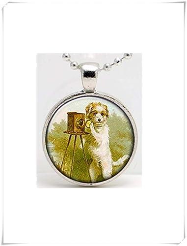 Leonid Meteor Shower Collar con colgante de cristal para perro, con una cámara vintage, hecho a mano, puro: Amazon.es: Joyería