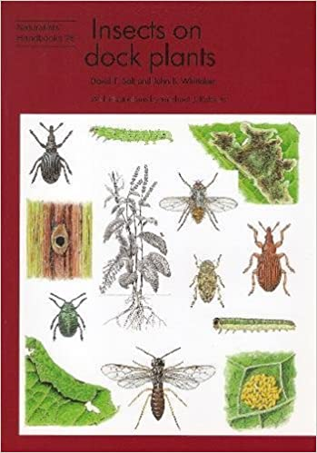 Book Insects on Dock Plants (Naturalists' Handbooks)
