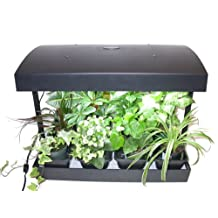"Grow Light Indoor Garden for herbs, vegetables, fruits and flowers by SunBlaster. 24""x17""x14"" size, 1 gallon reservoir and 2 Full spectrum 6400K High Output 24 watt Sun Blaster T5 grow light bulbs"