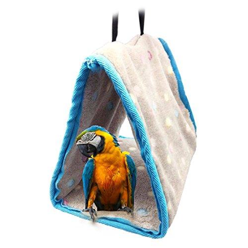 Parrot Hut - 7
