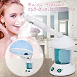 Portable 2 In 1 Hair and Facial Steamer with Bonnet Hood for Personal Home Use, Mini Table TOP SPA Steamer Machine with Cap, Hot Mist Ozone Hair Therapy Beauty Equipment