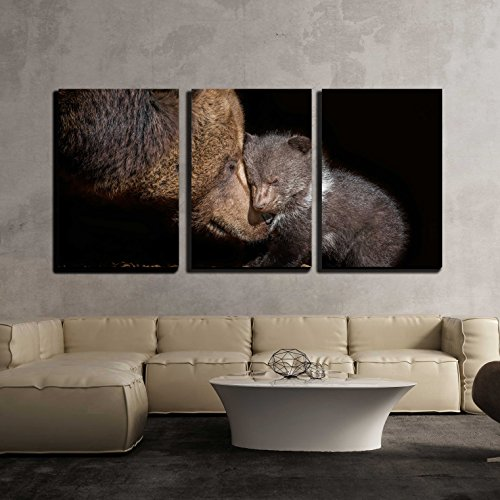 wall26 - 3 Piece Canvas Wall Art - Brown Bear - Ursus Arctos - Modern Home Decor Stretched and Framed Ready to Hang - 24