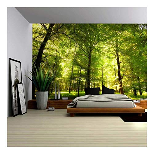 - wall26 - Crowded Forest Mural - Wall Mural, Removable Sticker, Home Decor - 100x144 inches