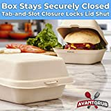 Biodegradable, Grease-Proof 6x6 Clamshell To Go Box