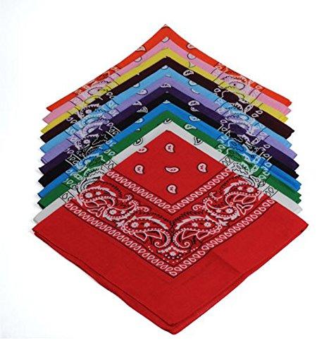 BSLINO One Dozen/12pcs Assorted Bandanas 22X22 Inch 100% Cotton Novelty Double Sided Print Paisley Cowboy Bandana Party Favor Scarf Headband Handkerchiefs by BSLINO (Image #8)