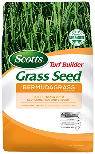 Scotts Turf Builder Grass Seed Bermudagrass - 10 Lb. | Built To Stand Up To Scorching Heat & Drought | Spreads To Grow A Thick, Durable Lawn | Spreads to Fill Bare Spots |Not Available In All States