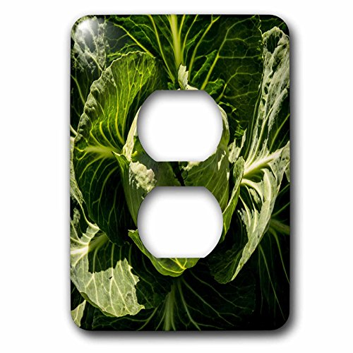 Danita Delimont - Food - California, Central Valley, Modesto, Maze Boulevard, cabbage for sale - Light Switch Covers - 2 plug outlet cover - Central Outlet Valley