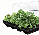 Large Premium Raised Container Garden, Enormous 21.5 Square Foot Container with Protective Cover, Self Watering, Designed by Vegepod in Australia