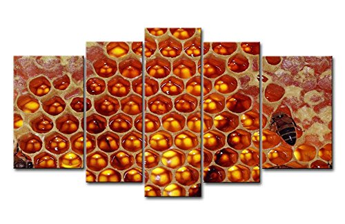 So Crazy Art 5 Panel Wall Art Painting Honeycomb Bees Honey Pictures Prints
