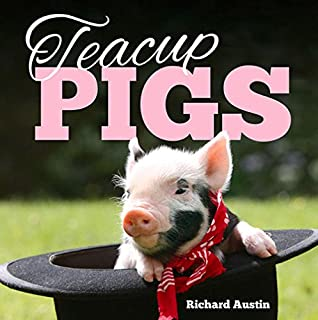 Pocket pigs wall calendar 2018 amazon richard austin teacup pigs voltagebd Gallery