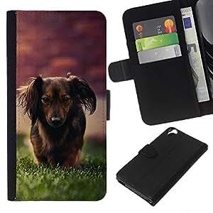 KingStore / Leather Etui en cuir / HTC Desire 820 / Dachshund Little Brown perro de pelo largo Hierba